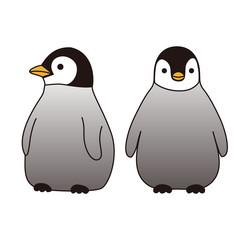 子供のペンギン