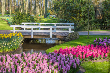 Bridge and strem with tulips