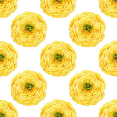 Seamless floral pattern with buttercups