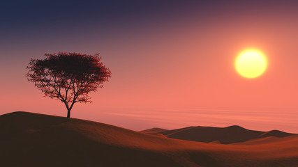 lonely tree on the desert sunset time background 3d rendering
