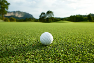 white golf ball on fairway with the green background in the coun