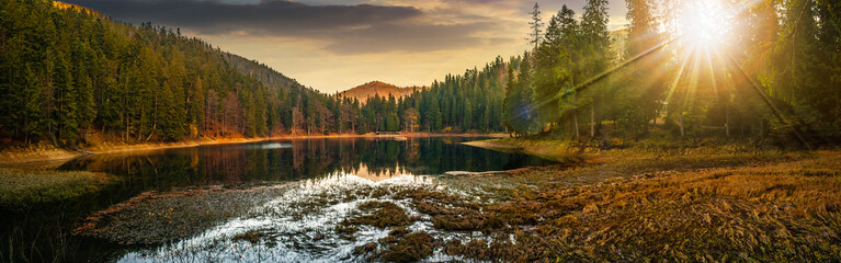 Foto op Aluminium Meer / Vijver panorama of crystal clear lake near the pine forest in mountains at sunset
