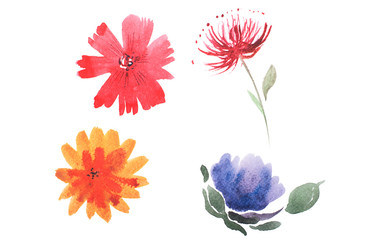 watercolor drawing of fresh garden flowers, summer meadow bouquet aquarelle painting