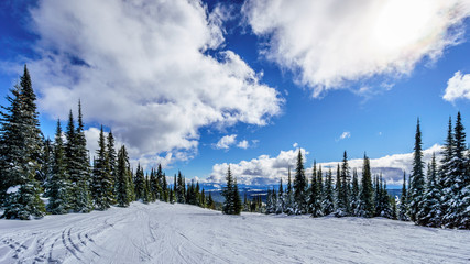 Wall Mural - Ski slopes and blue skies at Sun Peaks in the Shuswap Highlands in central British Columbia