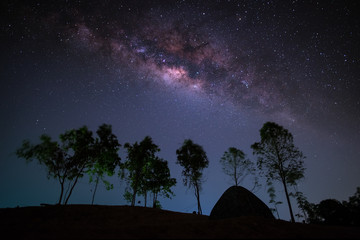 Milky way, night sky with trees and tent on land.