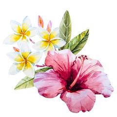 Watercolor hibiscus flower