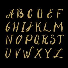 Hand drawn alphabet and design elements.