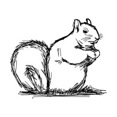 illustration vector hand draw doodles of squirrel isolated on white background