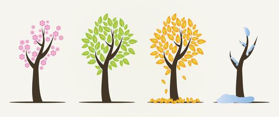 Set of four seasons trees Wall mural