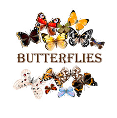 Butterflies with free space for your text. Hand drawn vector illustration. Russian butterflies.
