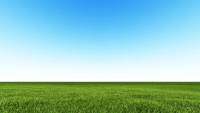 Beautiful landscape, grass clean blue sky