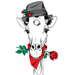 The image of the giraffe in the hat with flower of the rose. Vector illustration.