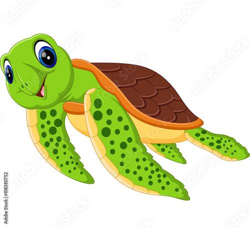 Cute cartoon turtle images