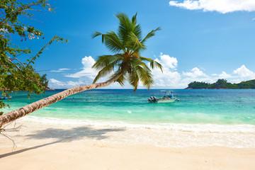 Foto auf AluDibond Strand Beautiful Anse Intendance beach at Seychelles