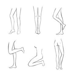 Naked Legs Collection-Set of female legs in different variations