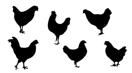 A collection of chicken silhouettes