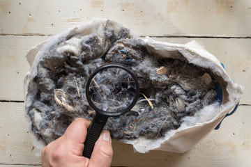Investigation of a torn dust bag with the aid of a magnifying glass