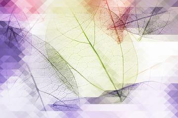 Acrylic Prints Decorative skeleton leaves Decorative skeleton leaves, abstract background