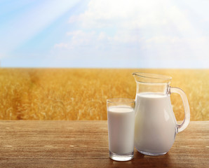 Milk in glassware on sunny nature background