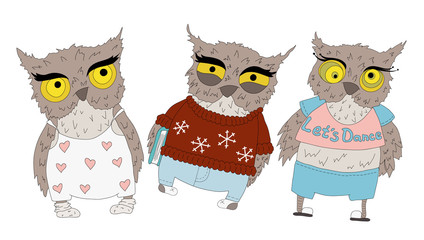 Set of owls, vector. Vector object illustration for any your project