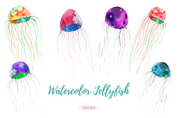 Set of hand painted watercolor jellyfish, vector.