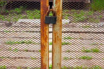 The old big Antique  padlock
