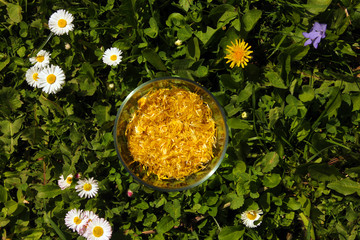 glass cup full of yellow dandelion petals
