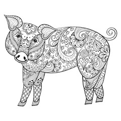Vector  Pig. Zentangle Pig illustration, Swine print for adult a