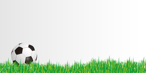 Fußball - Gras