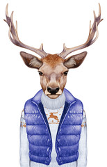 Animals as a human. Portrait of Deer in down vest and sweater. Hand-drawn illustration, digitally colored.