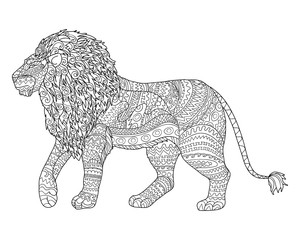 Adult coloring page for antistress with lion.
