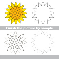 Sunflower. Drawing worksheet.