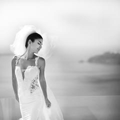 Portrait of beautiful luxury bride in veil b&w