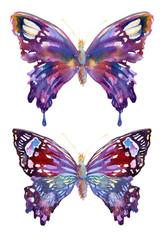 Watercolor butterflies design