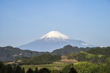 Poster Mexico 清水吉原から望む富士山