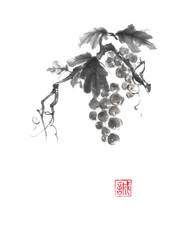 Bunch of grapes Japanese style original sumi-e ink painting.