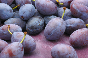 Damson plum (damascene) fruits