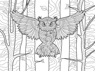Owl in the forest coloring book for adults vector