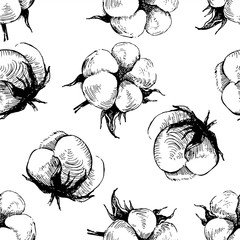 hand drawn seamless pattern with cotton plant