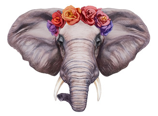 Portrait of  Elephant with floral head wreath. Hand-drawn illustration, digitally colored.