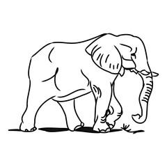 Big elephant 0(circuit) 0