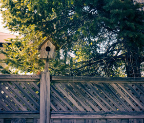 Wooden birdhouse attatched to a fence next to a coniferous tree