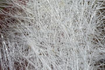 White fiberglass background
