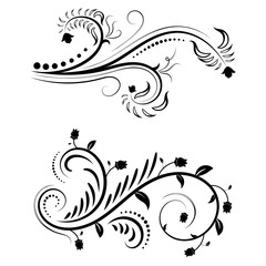 Beautiful floral illustration with swirls