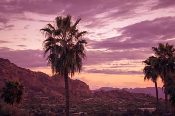 Wall Mural - Camelback Mountain, Phoenix,AZ