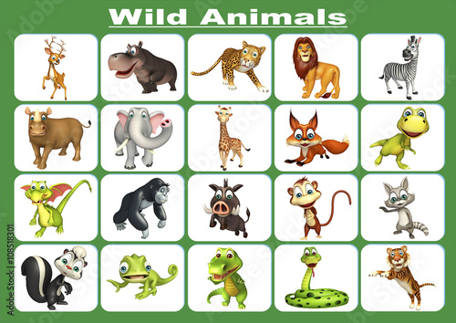 wild and domestic animals different environment The role of the domestic animal in the zoo donna exposure to wild animals through traveling fitness for different domestic.