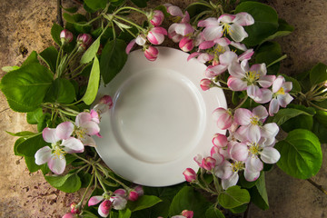 Empty white plate with spring blossom branches of apple tree top