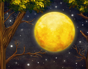 Illustration of trees and full moon with  stars   at night sky