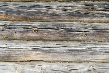The texture of wood.