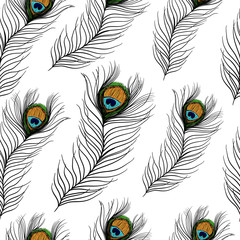 Seamless pattern with peacock feathers on white background